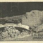 Adevaratii autori ai asasinarii lui I. G. Duca